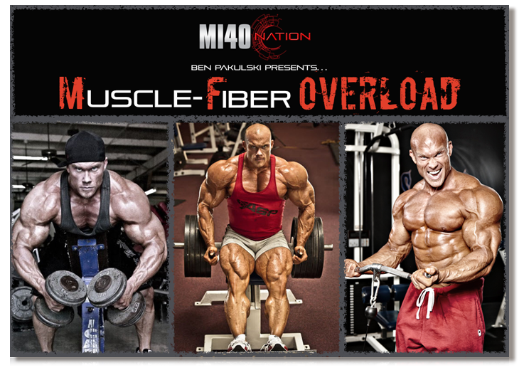 3d-cover-muscle-fiber-overload